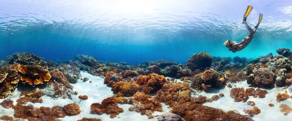 Tropische Strandvakantie | Real Travel Menen